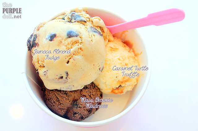 Jamoca Almond Fudge, Maui Brownie Madness and Caramel Turtle Truffle (Junior Triple P195)