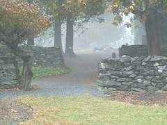 Foggy morning at Virginia State Arboretum