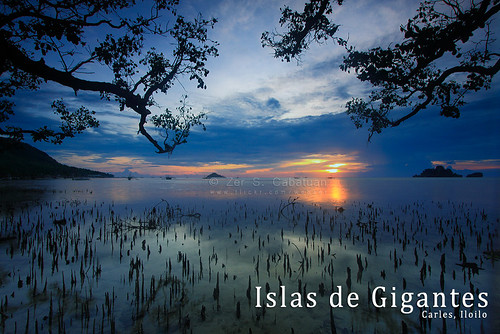 sea philippines mangrove visayas iloilo carles webzer westernvisayas akosizer zercabatuan islasdegigantes