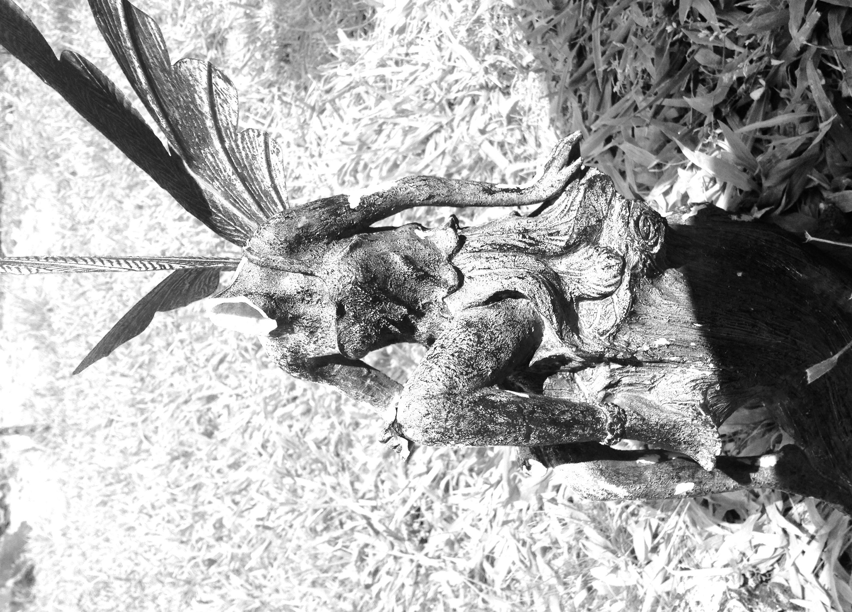 swingers in waldron arkansas