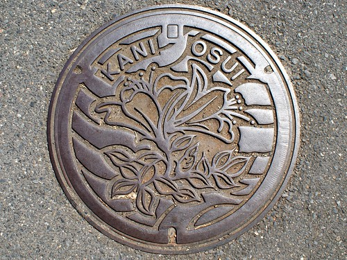Kani Gifu, manhole cover (岐阜県可児市のマンホール)