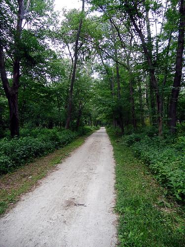 dp trail
