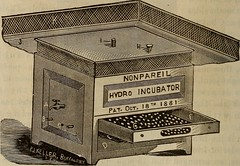 "Image from page 131 of ""Artificial incubation and incubators .."" (1883)"