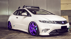 Honda Purple