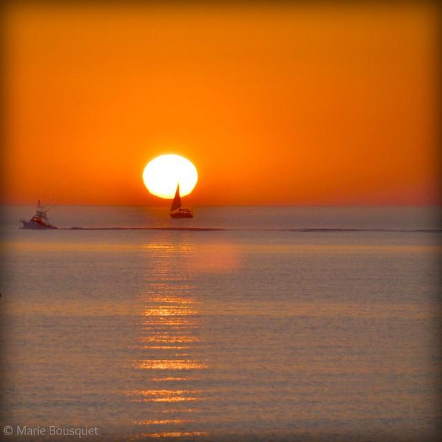 Les petits bateaux de l'aube