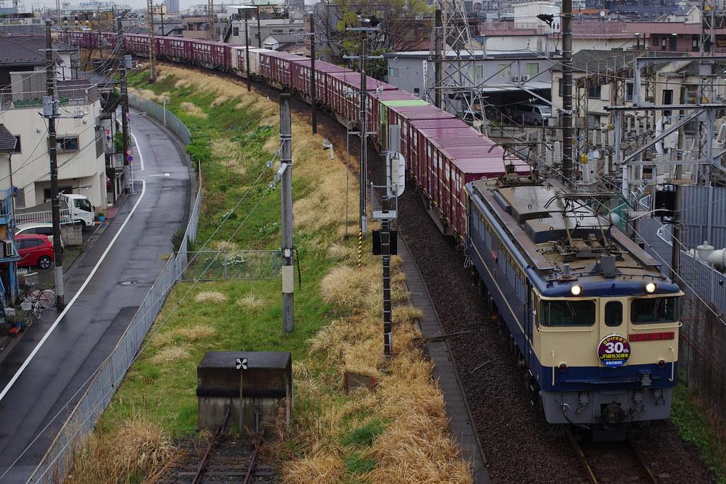 IMGP2960