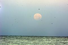 Moon 691x461