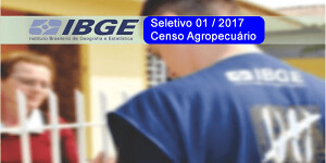 ibge-censo-300x150.png