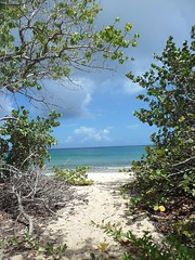 Have your own exploration. Anguilla is paradise