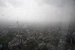 snow(0.0), haze(0.0), freezing(0.0), fog(1.0), rain(1.0), drizzle(1.0), morning(1.0), mist(1.0),