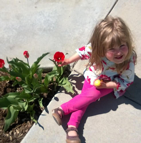 Marin and Tulips
