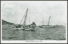 Aden Postcards History