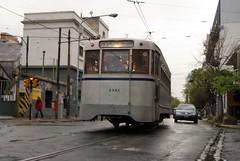 Tranvia de Buenos Aires Beatrice Murch 04