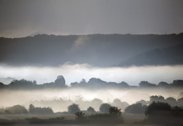 Misty Gwent Landscape