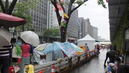 愛樹人士搭起帳篷長期抗爭