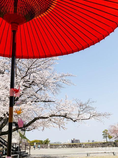 20140327山陽D2熊本-1120862