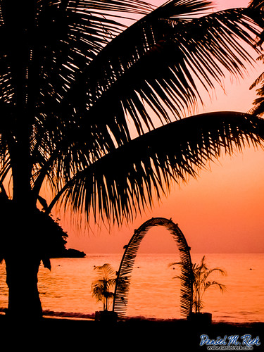 ocean pink sunset sky orange sun tree beach nature water outdoors arch horizon palmtree jamaica tropical tropics feature ochorios saintmaryparish dmrfeature