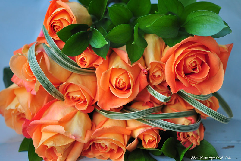 roses_ribbon_2_web