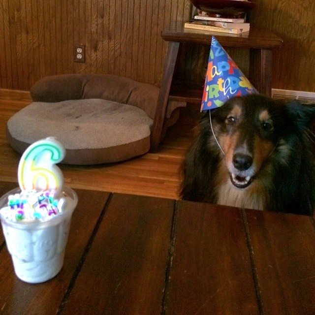 Birthday boy waits for his treat