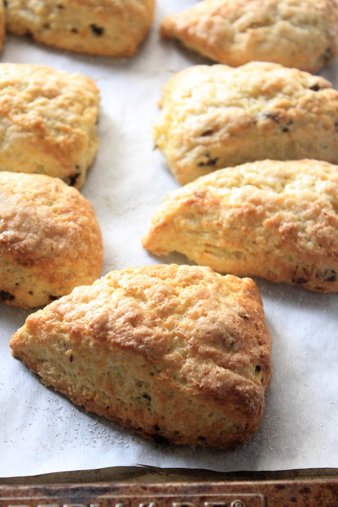 ORANGE - RAISIN SCONES