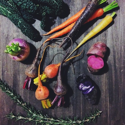 Eating the rainbow.   #vscocam #vsco #winterfruitandveg @sydneymarkets #eattherainbow #foodporn #foodphotography
