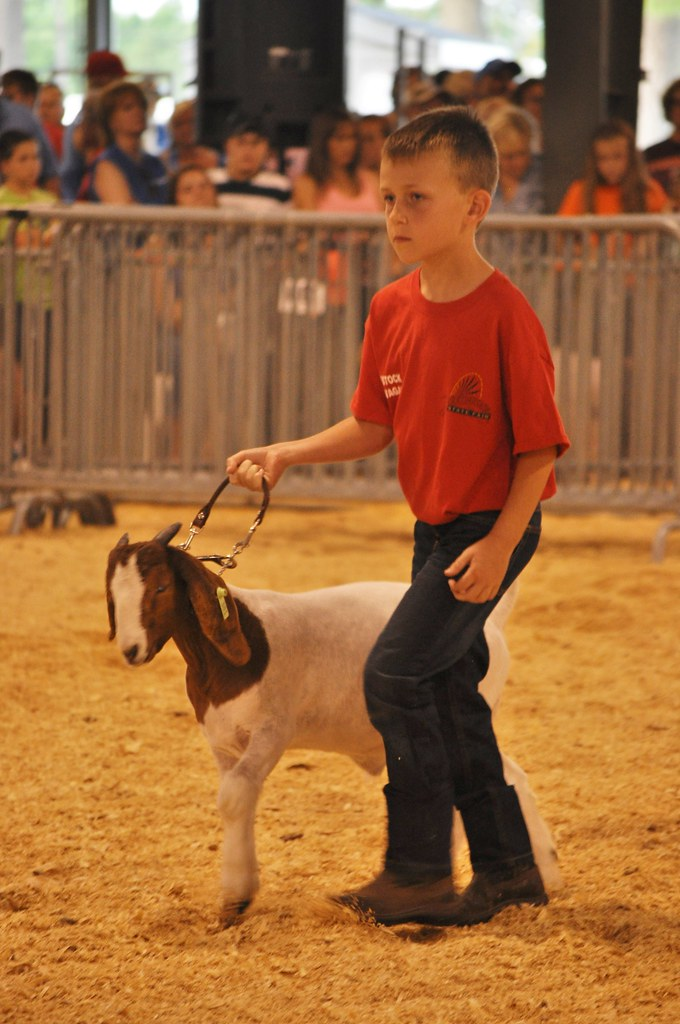 2014 Delaware State Fair | Delaware Farm Bureau | Flickr on