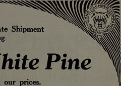 "Image from page 746 of ""Canadian forest industries January-June 1914"" (1914)"