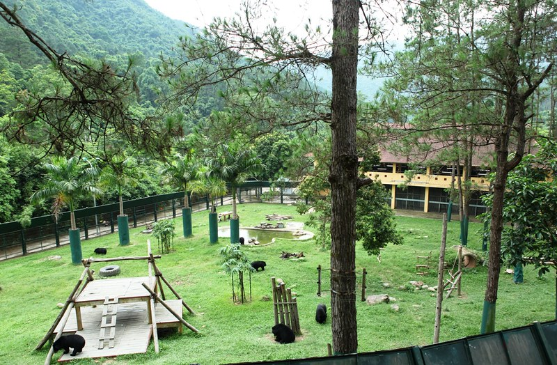 An enclosure at Animals Asia's Vietnam Bear Rescue Centre 2014