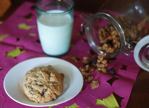 GranolaOatmealCookies4