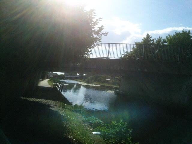 PIC_3374