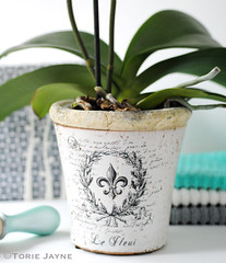 Plant pot from MiaFleur