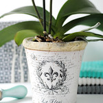 Plant pot from MiaFleur