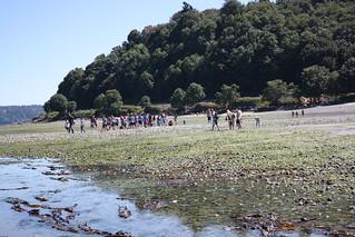 clame-hole-kids-beach