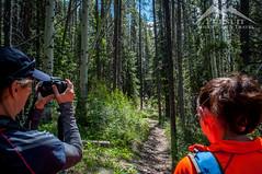 Women in the Woods | Siffleur Falls