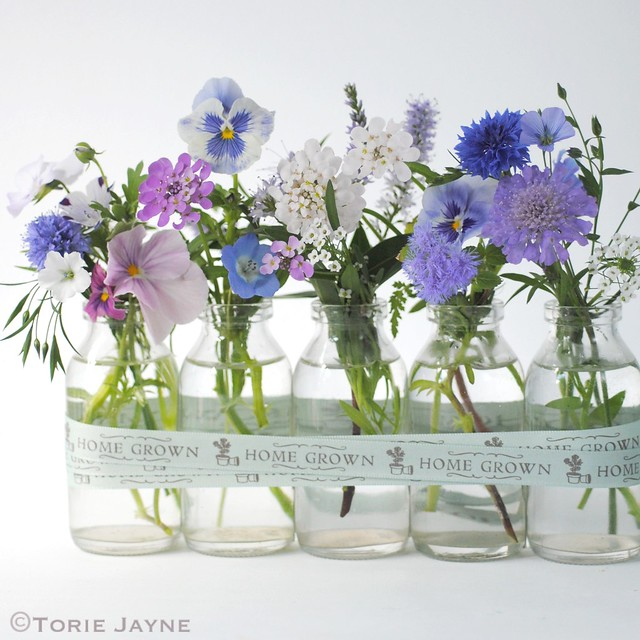 MY Home grown flowers