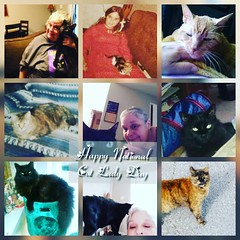 #happynationalcatladyday😎😻 Its National Cat Lady Day..hugs your purring babies