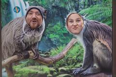 twycross zoo  -3096