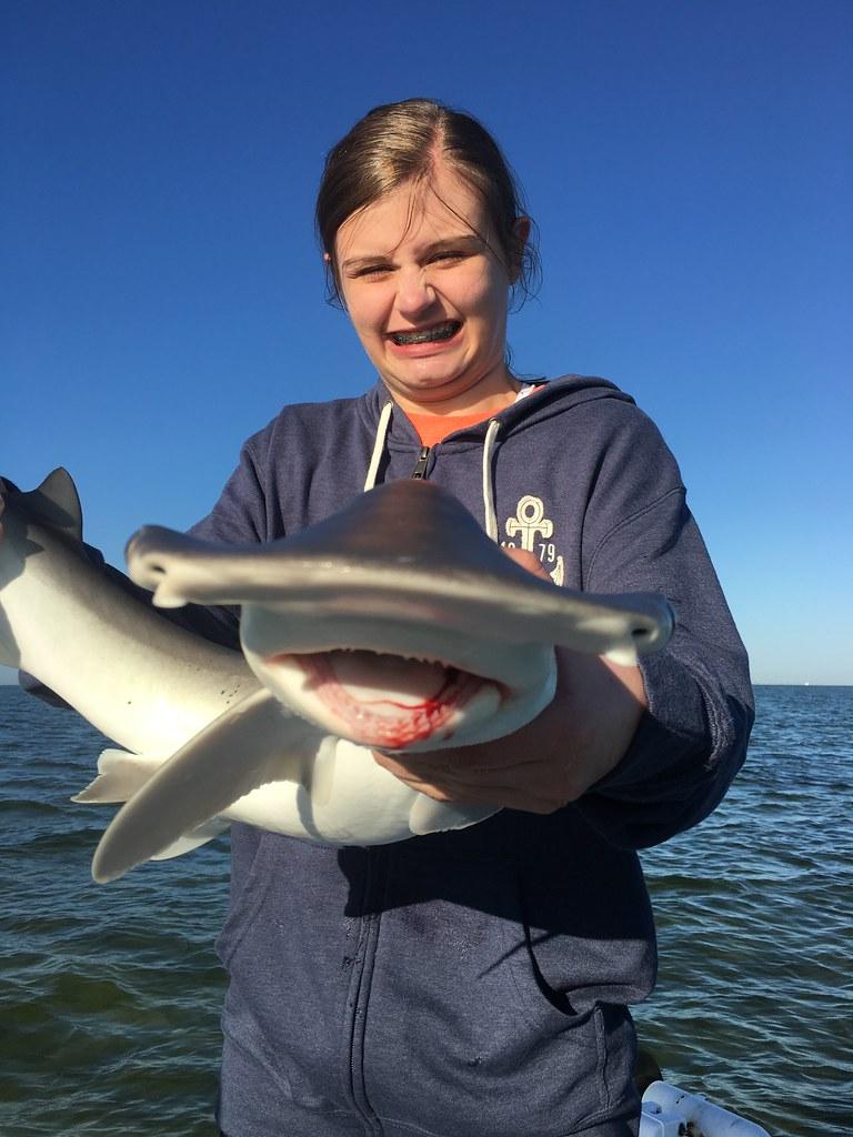 SHARK! Tampa Fishing Charters®,Inc. 813-245-4738