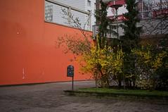 Greifswalder Straße, Berlin-Prenzlauer Berg