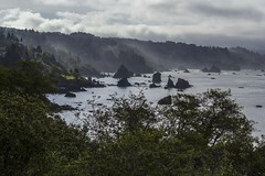 Northern California coast.