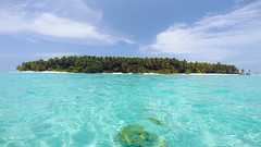 Maldives - Dhoores island, Dhaalu Atoll