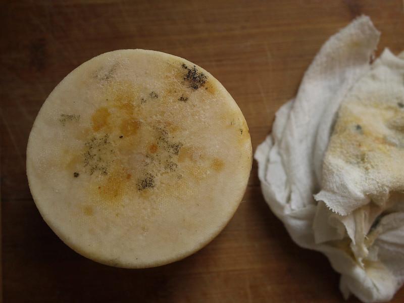 Clothbound goat milk cheddar - disrobed