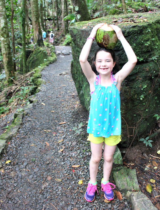 Hi Sugarplum | El Yunque Rainforest