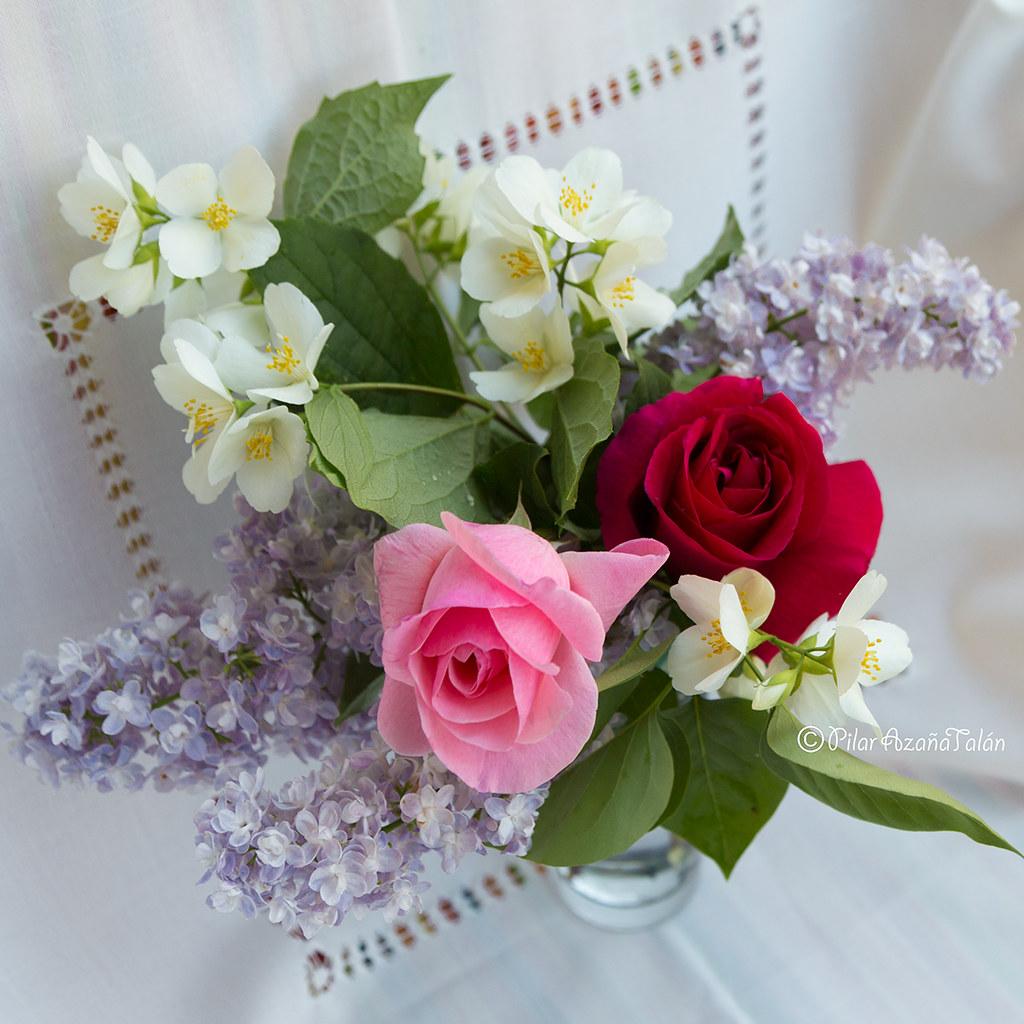 Feliz Cumpleanos Querida Mama Happy Birthday Dear Flickr