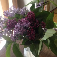hydrangea(1.0), lilac(1.0), flower arranging(1.0), cut flowers(1.0), flower(1.0), purple(1.0), floral design(1.0), plant(1.0), lilac(1.0), flower bouquet(1.0), floristry(1.0),