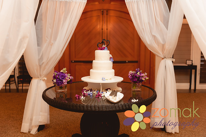 a beautifully simple cake is presented to the bride and groom