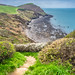 High cliffs, Crackington Haven, Cornwall, United Kingdom