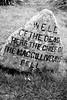Culloden Moor-5882