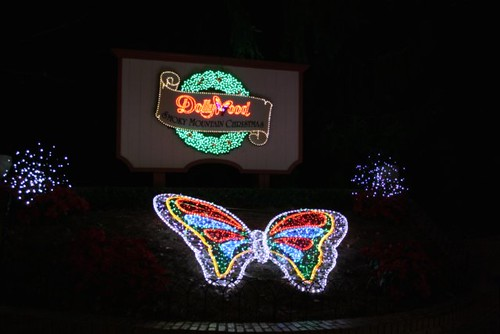Dollywood Christmas 2012