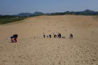 鳥取砂丘(6)